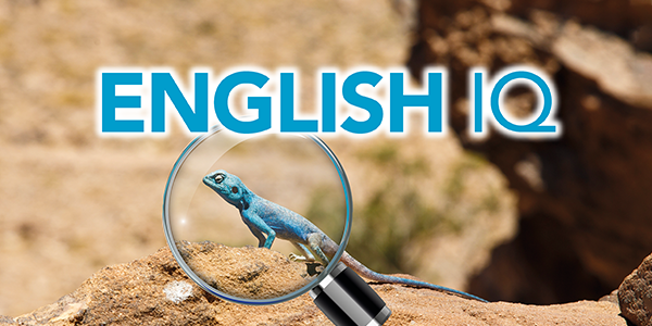 Sterling English IQ Courses